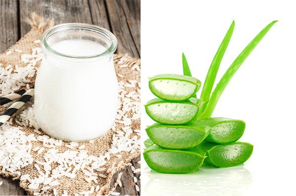 Mặt nạ nha đam và nước vo gạo giúp làm trắng da, trị thâm hiệu quả