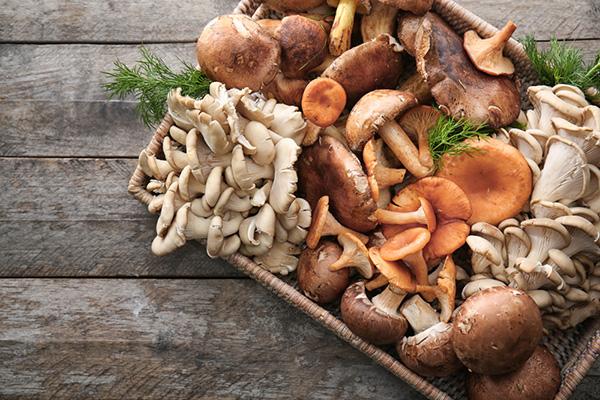 Nấm là thực phẩm bổ dưỡng, không chứa chất béo