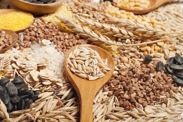 Ngũ cốc chứa nhiều gluten