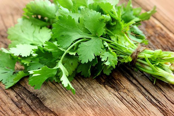 Rất ít người biết đến rau mùi cùng có thể là một loại mặt nạ dưỡng da, trị mụn, tàn nhang rất hiệu quả