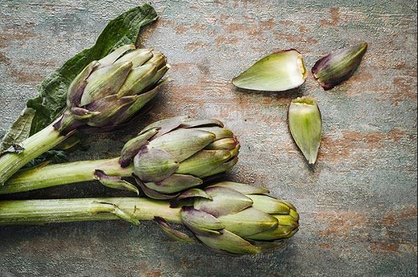 Hoa Atiso chứa các chất dưỡng da, làm sạch da hiệu quả