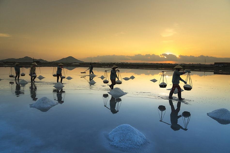 Hình ảnh diêm dân đang thu hoạch muối đẹp