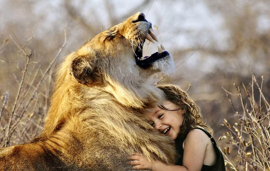 Sư tử bên cô bé