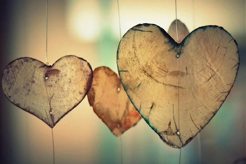 Trái tim bằng những lát gỗ mỏng