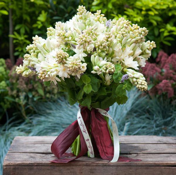 Hình ảnh bó hoa huệ trắng đẹp