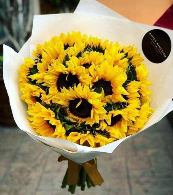Hình ảnh bó hoa hướng dương đẹp 3