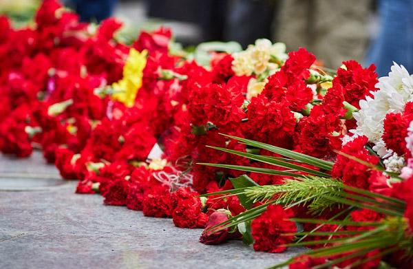 Những cây hoa xếp chồng lên nhau