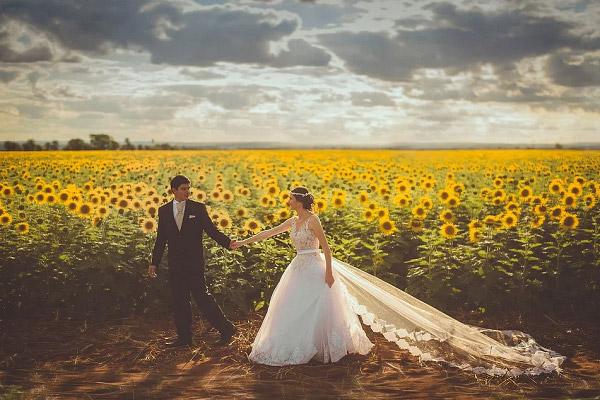 Cánh đồng hướng dương là địa điểm chụp hình cưới được ưa thích