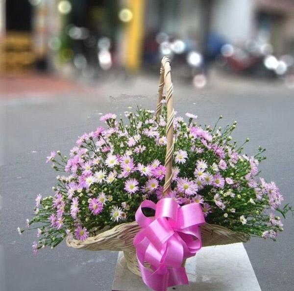 Lẵng hoa thạch thảo đẹp