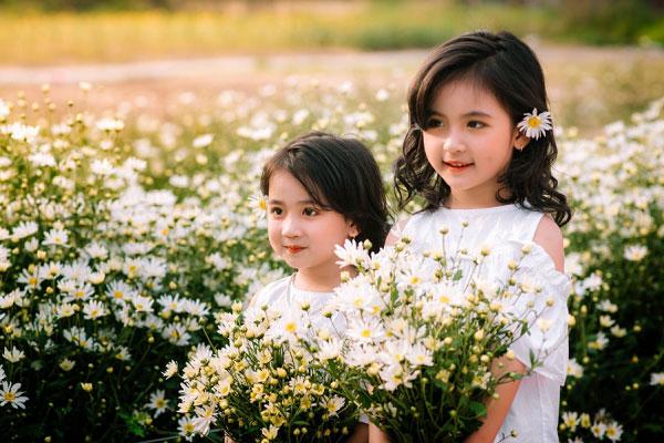 Hai em bé chụp hình với cúc họa mi