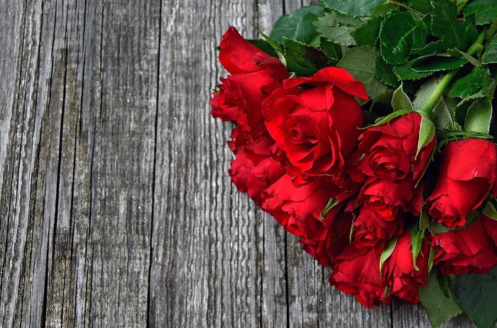 Hình ảnh đẹp về hoa hồng