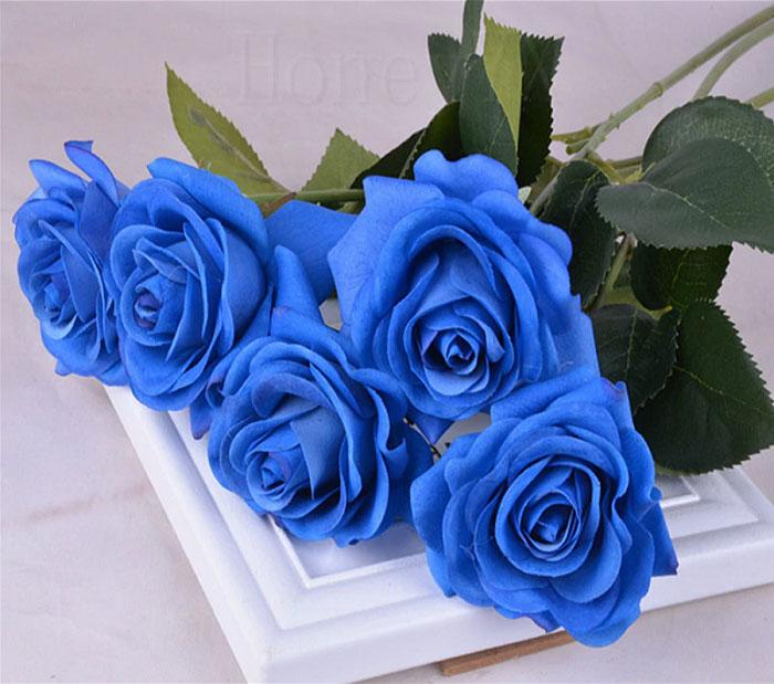 Màu xanh của hoa hồng mang nhiều ý nghĩa
