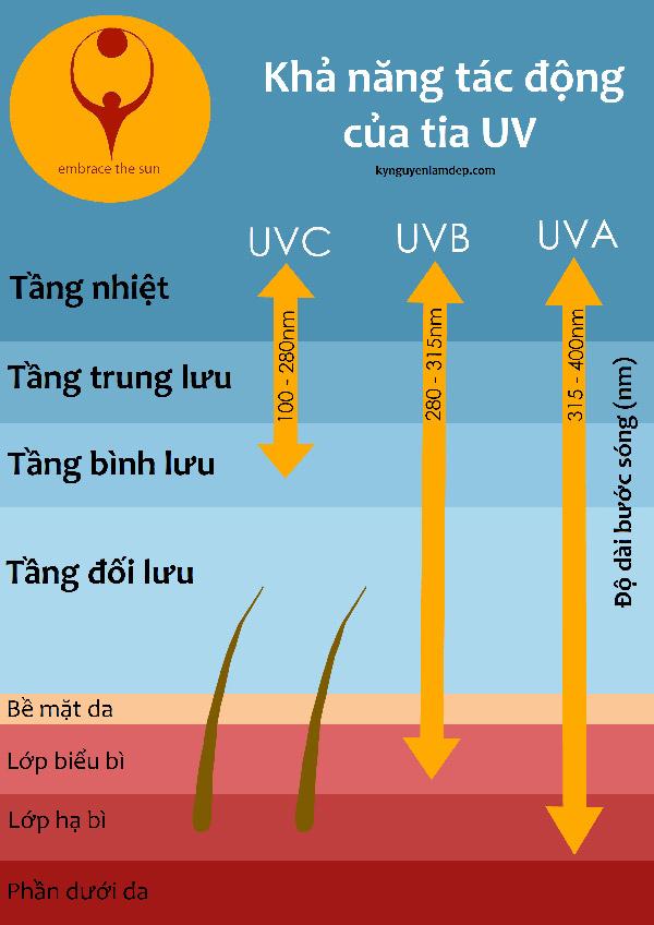 Khả năng tác động của các loại tia UV
